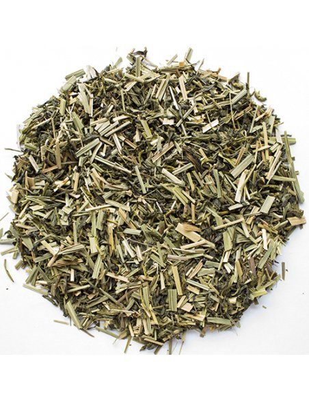 Green Tea & Lemongrass Organic