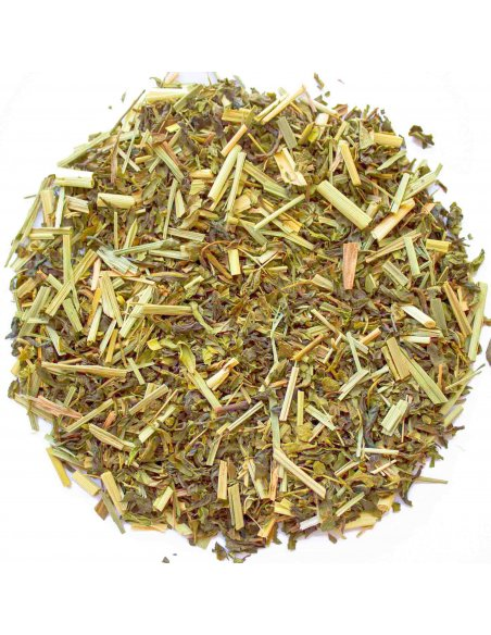 Lemongrass & Mint Green Tea Organic