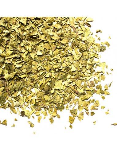 Lemon Myrtle Organic