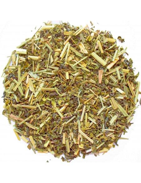 Lemongrass & Mint Green Tea Organic